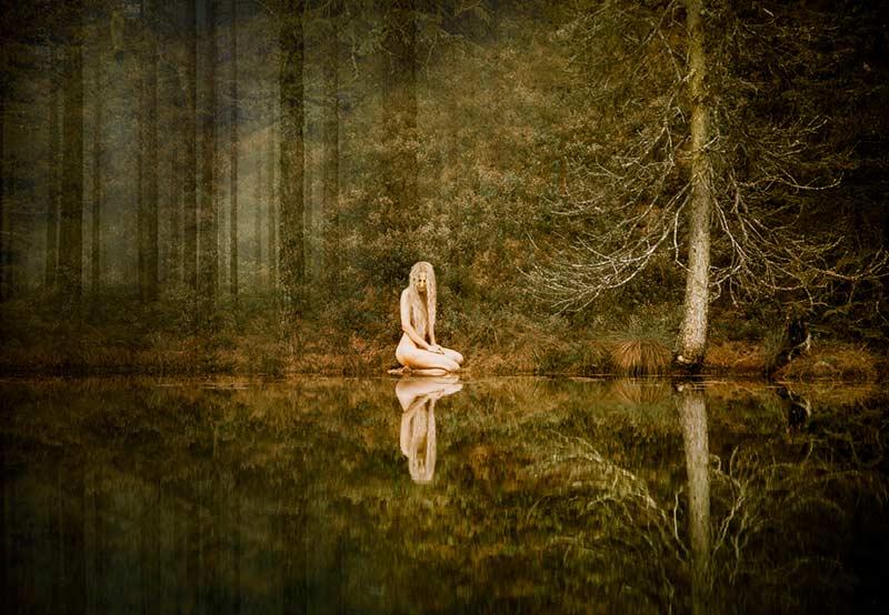 skogstjärnen_jonnajinton